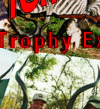 Tanzania Hunting Safaris Photo Collage